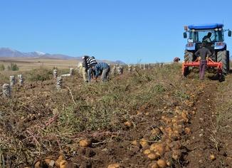 Tarım ve Orman Bakanlığından mevsimlik tarım işçilerine Coronavirus tedbiri