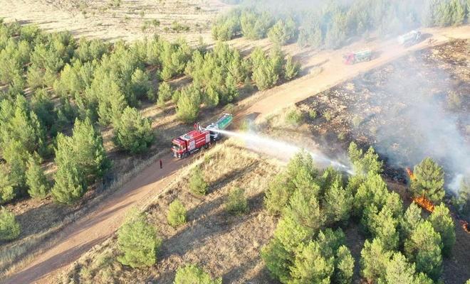 Şanlıurfa'da orman alanlarına giriş ve çıkışlar yasaklandı