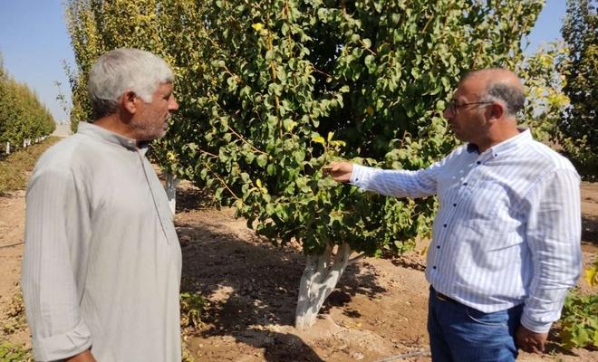 Barış Pınarı Bölgesinde tarım ve hayvancılıkla uğraşanlara destek veriliyor