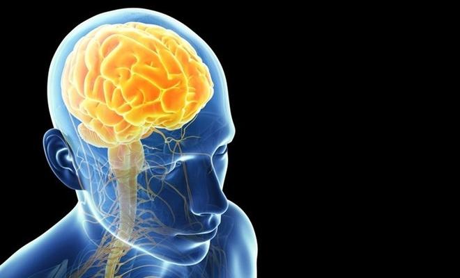 Beyninin yarısı alınan insanlar normal yaşamını sürdürüyor