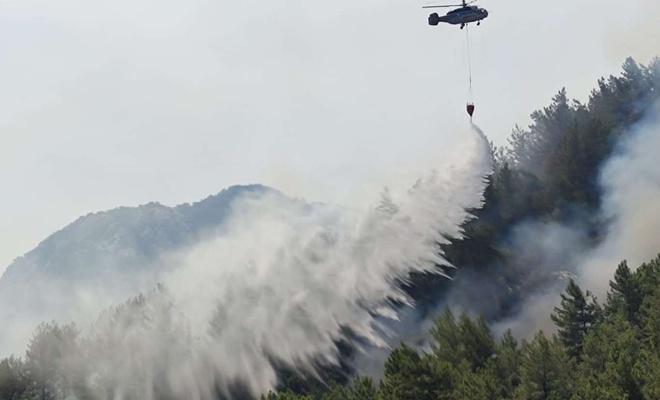 Silifke'de çıkan 2 yangın kontrol altına alındı
