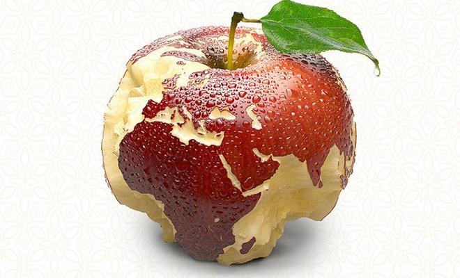 Dünya genelinde üretilen,  gıdanın üçte biri israf ediliyor!