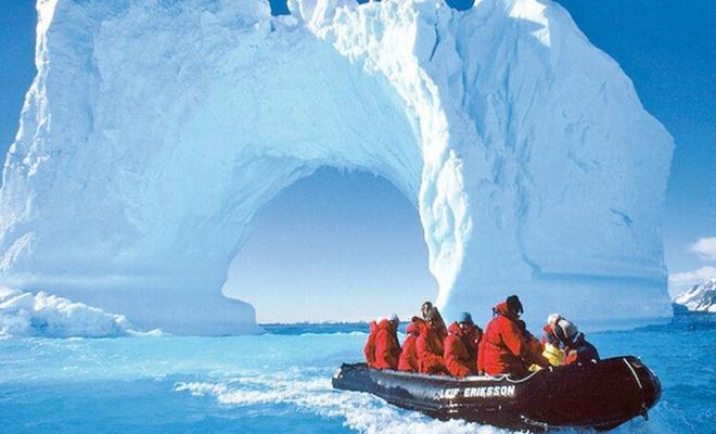 Bilim insanları Antarktika'da orman izlerine rastladı