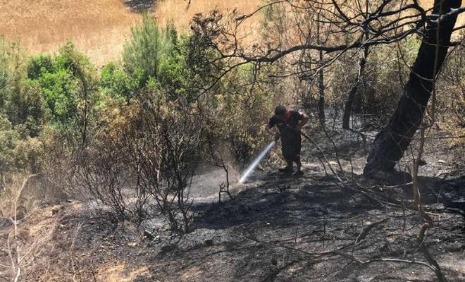 Adana'daki orman yangınında yaklaşık bir hektar alan zarar gördü